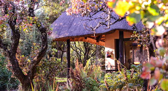 Drakensberg Self Catering Accommodation Giants Castle Camp Garden View Chalet Giants Castle Game Reserve KwaZulu-Natal